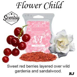 flower child scentsy wax melt