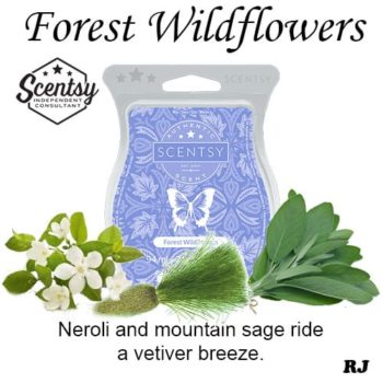 forest wildflowers scentsy wax melt