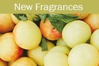 New Scentsy Fragrances