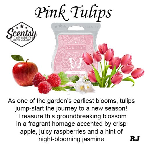 Scentsy pink tulips wax melt