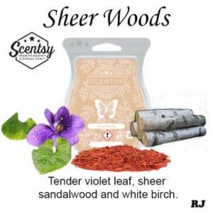 sheer woods scentsy wax melt