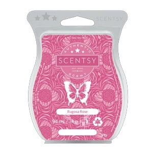 Rugosa Rose Scentsy Bar
