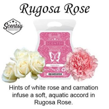 Rugosa Rose Scentsy Bar Styled