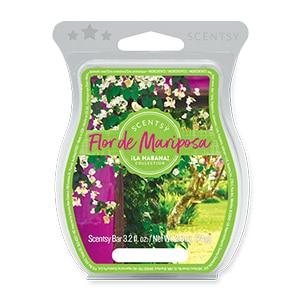Flor de Mariposa Scentsy Bar