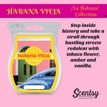 Habana Vieja Scentsy Bar