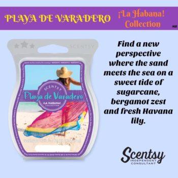 Playa de Varadero Scentsy Bar