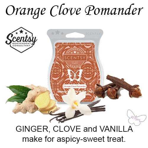 Orange Clove Pomander Scentsy Bar