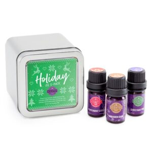Holiday Scentsy Oil Gift Set