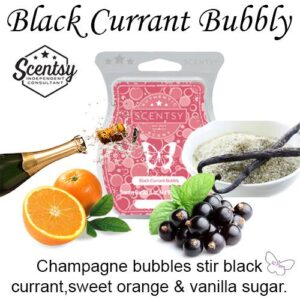 scentsy seasonal scentsation wax bar