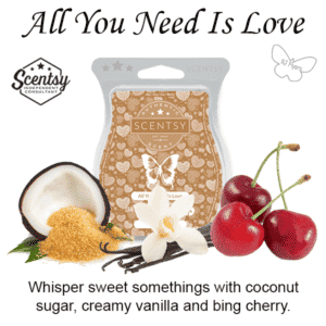 All You Need In Love Scentsy Bar