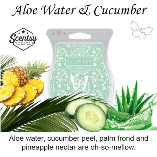 Aloe Water & Cucumber Scentsy Bar