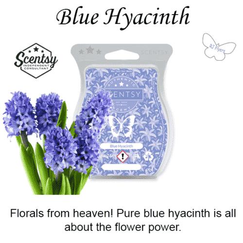 Blue Hyacinth Scentsy Bar