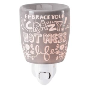 Crazy Hot Mess Scentsy Plugin Mini Warmer