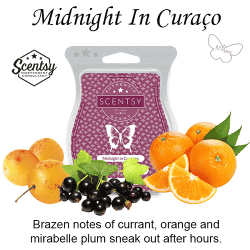 Midnight In Curaco Scentsy Bar