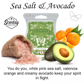 Sea Salt and Avocado Scentsy Bar