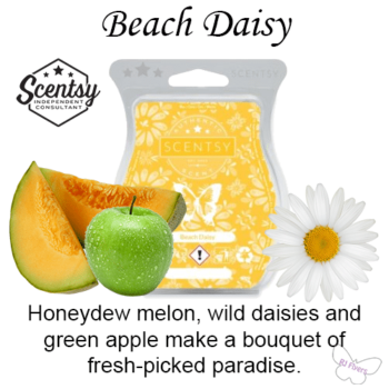 Beach Daisy Scentsy Scented Wax Bar