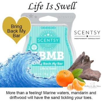 Life Is Swell Scentsy Bar