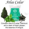 Atlas Cedar Scentsy Bar