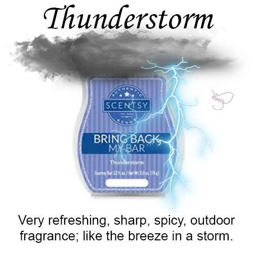 Thunderstorm Scentsy Bar