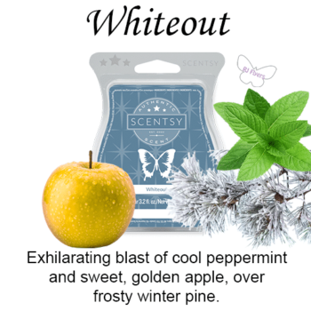 Whiteout Scentsy Bar