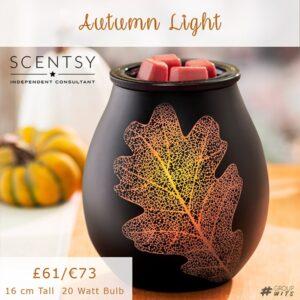 Autumn Light UK and Europe