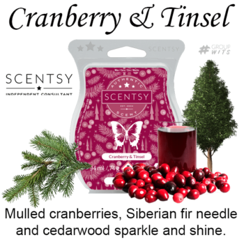 Cranberry and Tinsel Scentsy Scented Wax Bar