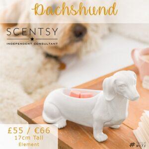 Scentsy UK Dachshund