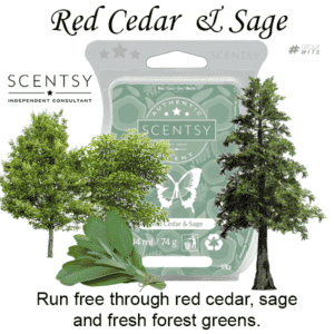 Red Cedar and Sage Scentsy Scented Wax Bar