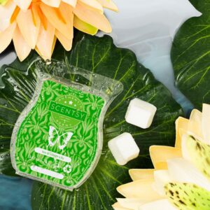 Scentsy Ivy & Water Lily