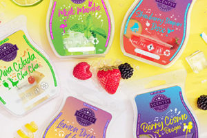 Scentsy Let's Boogie Collection