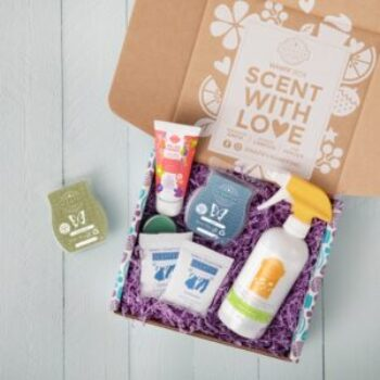 Scentsy Whiff Box UK
