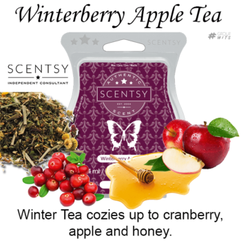 Winterberry Apple Tea Scentsy Scented Wax Bar