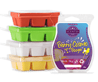 Scentsy-Let's-Boogie-Wax-Collection