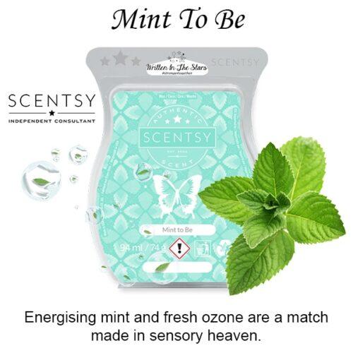 Mint To Be Scentsy Melt Wax Bar