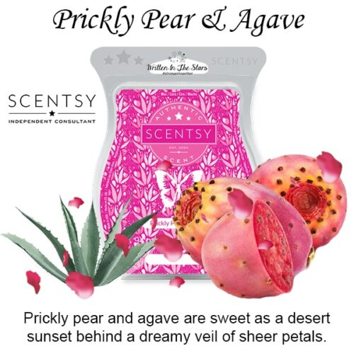 Prickly Pear and Agave Scentsy Melt Wax Bar
