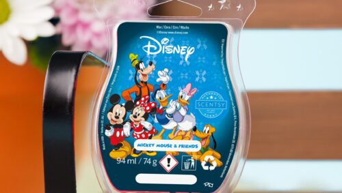 Scentsy Disney Mickey Mouse and Friends Scentsy Bar