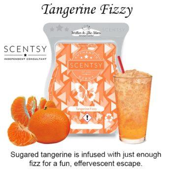 Tangerine Fizzy Scentsy Wax Melt Bar