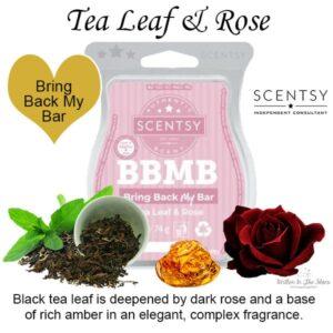 Tea Leaf & Rose Scentsy Bar