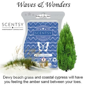 Waves and Wonders Scentsy Wax Melt Bar