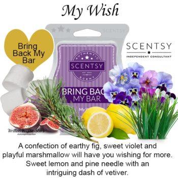 My Wish Scentsy Wax Bar
