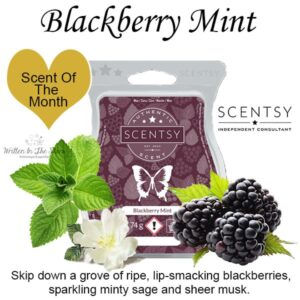 Blackberry Mint Scentsy Scented Wax Bar