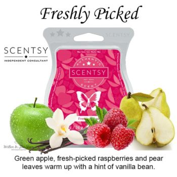 Freshly Picked Scentsy Bar