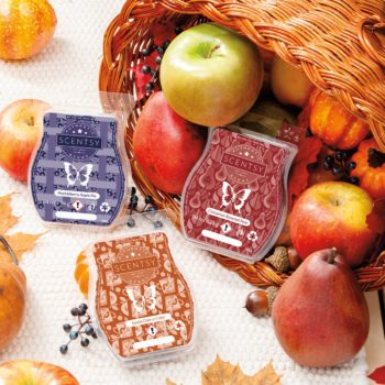 Harvest Delights Scentsy Bar 3-pack