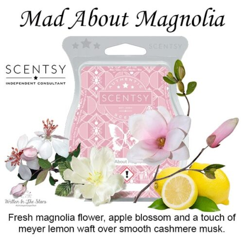 Mad About Magnolia Scentsy Bar