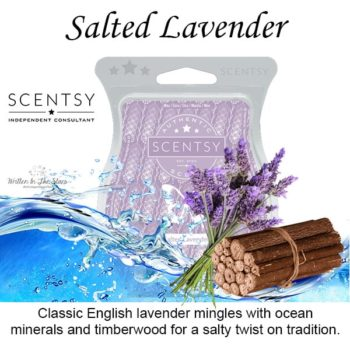 Salted Lavender Scentsy Bar