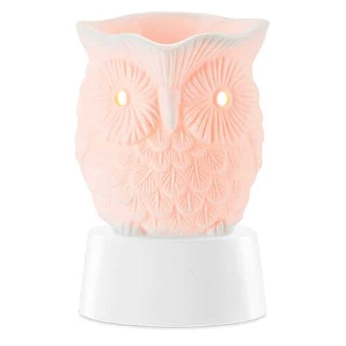 Whoot Mini Warmer with Tabletop Base