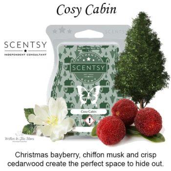 Cosy Cabin Scentsy Wax Bar