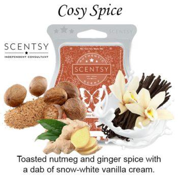 Cosy Spice Scentsy Bar