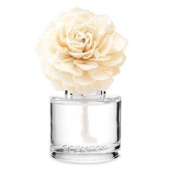 Black Raspberry Vanilla – Fragrance Flower
