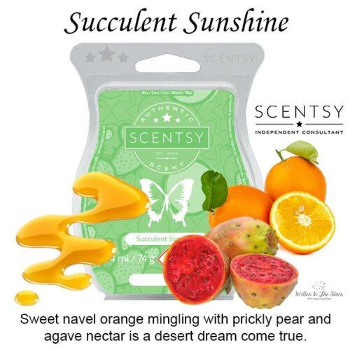 Succulent Sunshine Scentsy Bar